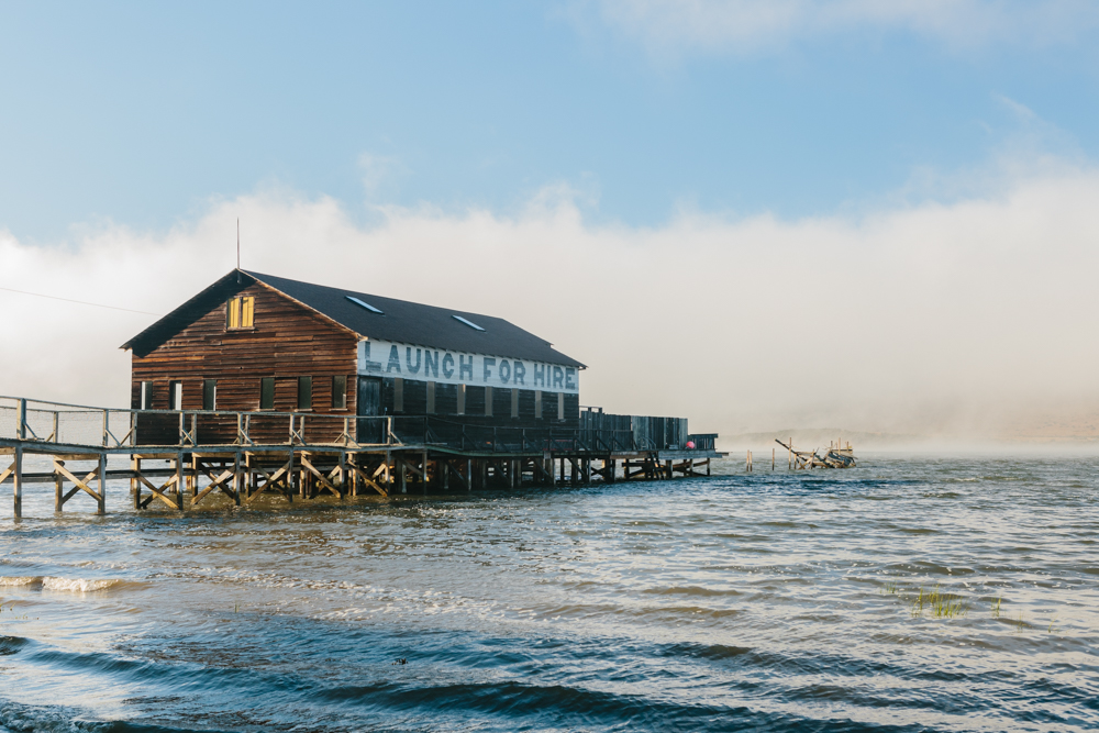 FogPoint_Hasselbrink_3J5A4524